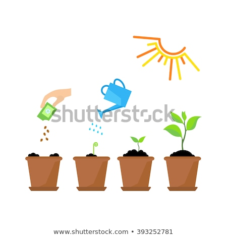 Gardening Plant, Watering Pot and Shovel Vector Stock photo © robuart