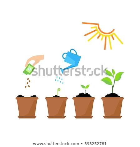 Jardinagem planta pote pá vetor Foto stock © robuart
