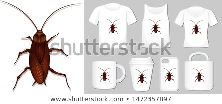 Graphic of cockroach on different types of product template Stock photo © bluering