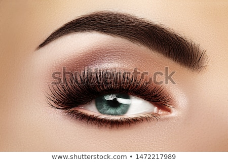 Сток-фото: Beautiful Macro Shot Of Female Eye With Extreme Long Eyelashes And Black Liner Makeup