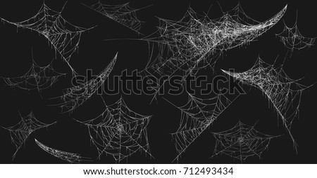pók · net · kert · szemek · tigris · hús - stock fotó © pakhnyushchyy
