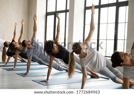 Plank Work Out, Abs Improvement, Woman on Mat Stock photo © robuart
