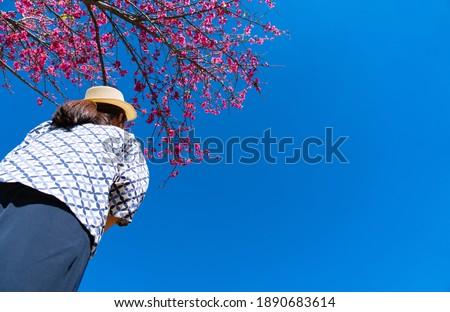 Lány park külső ágak virágzó fák Stock fotó © ElenaBatkova