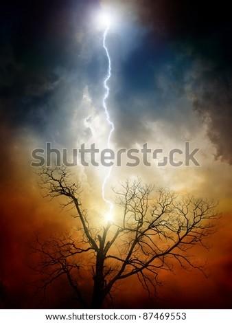 ツリー 雷 暗い 空 劇的な 素朴な ストックフォト © dashapetrenko