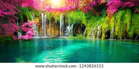 滝 · 公園 · 水 · 風景 · 山 · 夏 - ストックフォト © ozaiachin