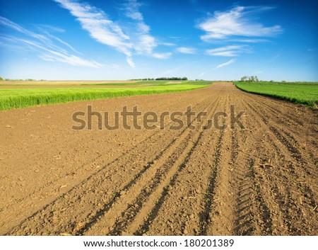 черный области пейзаж жизни белый грязи Сток-фото © mycola