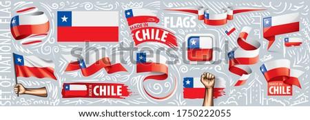 Vektor szett zászló Chile különböző kreatív Stock fotó © butenkow