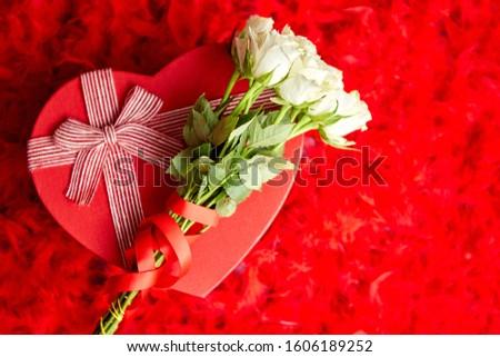 güller · pembe - stok fotoğraf © dash