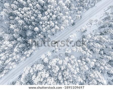морозный · поверхность · полный · кадр · выстрел - Сток-фото © pedrosala