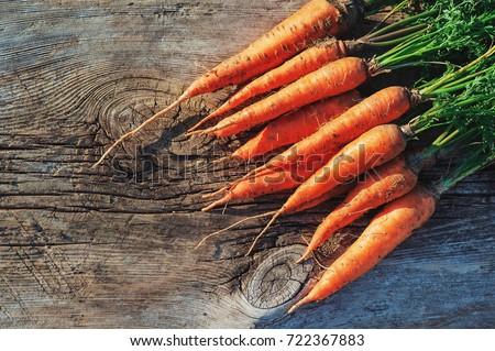 Colheita cenouras fresco terreno verão laranja Foto stock © Virgin