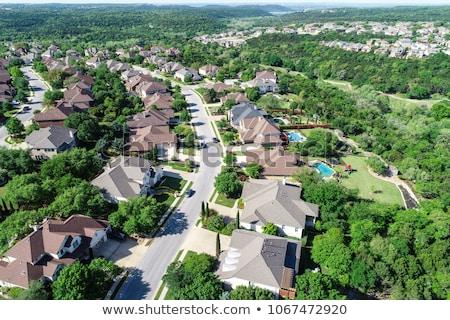 aerial view of suburban houses near forest Stock photo © dolgachov