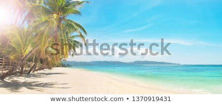Beautiful white sand beach of Boracay stock photo © galitskaya