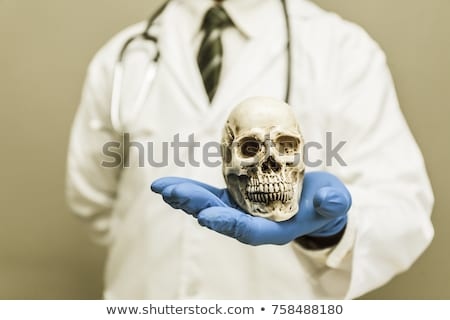 Jóvenes doctor de sexo masculino esqueleto médicos cuerpo estudiante Foto stock © Elnur