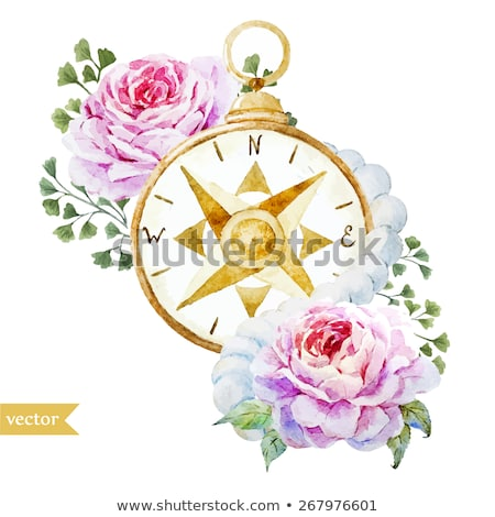 Stock photo: Floral Compass