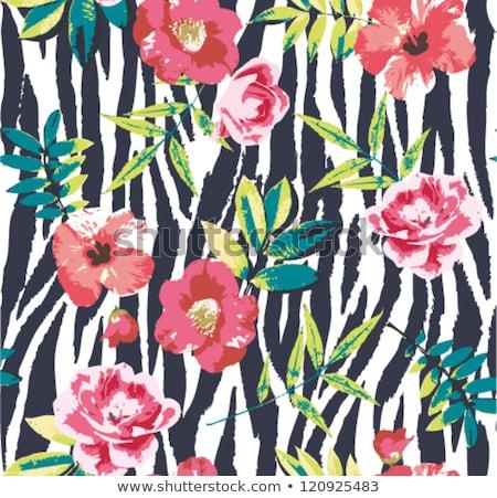 Sjabloon bruin zebra patronen illustratie ontwerp Stockfoto © bluering
