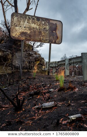 Placa sinalizadora lixo paisagem arbusto azul montanhas Foto stock © lovleah