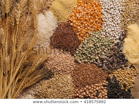 Cereal grains Stock photo © REDPIXEL