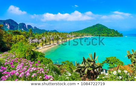 Mar pequeño selva isla Tailandia playa Foto stock © PetrMalyshev