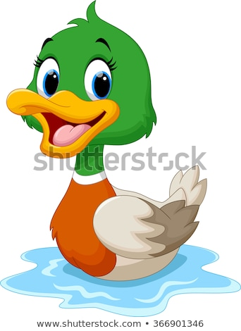 Cute Cartoon Duck Stock photo © indiwarm