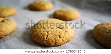 Ready backed cookies on backing paper in a tray Stock photo © 3523studio