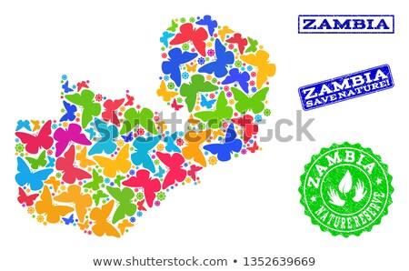 Zambia butterfly stamp Stock photo © sirylok