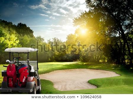 Stok fotoğraf: Golf Car On A Course In Summer