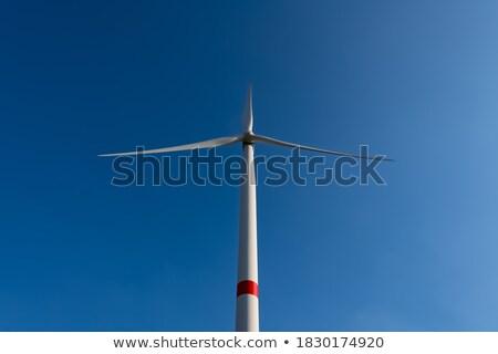 wind turbine frog perspective Stock photo © filmstroem