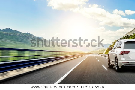 Car on the road stock photo © malexandric