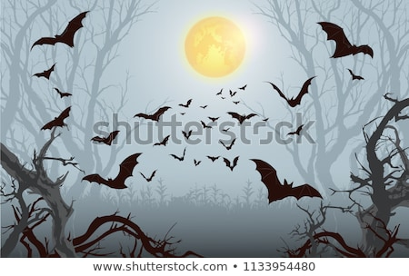 Cartoon bat battant lune ciel signe Photo stock © AnnaVolkova
