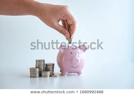 Mão moeda mulher metal banco Foto stock © a2bb5s