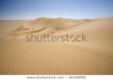Rolling sand dunes of the Arabian desert Stock photo © SophieJames