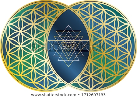 Chakra Two Mandala stock photo © hpkalyani