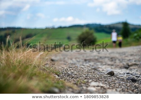 Boy on a Rural Mountain Road stock photo © 2tun