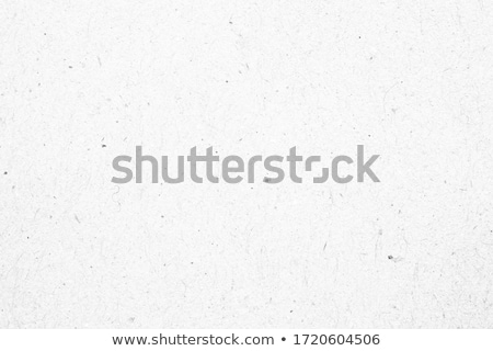 Fiber Paper Texture - Black stock photo © eldadcarin
