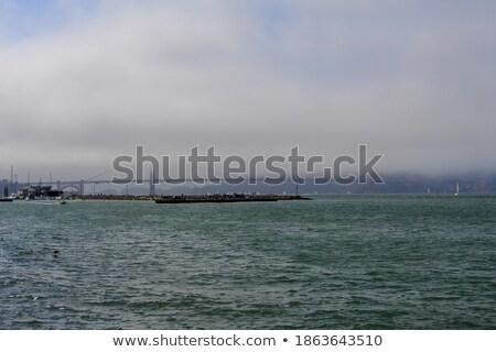 синий тумана морем туманный день низкий Сток-фото © lunamarina