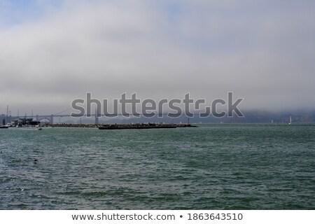 Blauw mist zee mistig dag laag Stockfoto © lunamarina