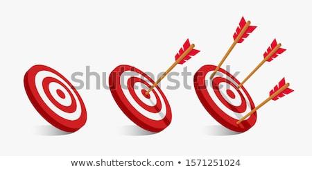 3d target and arrows, isolated on white Stock photo © digitalgenetics