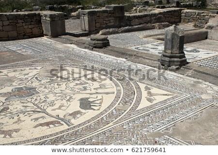 Ancient Roman Mosaic of wild African animals  Stock photo © Hofmeester