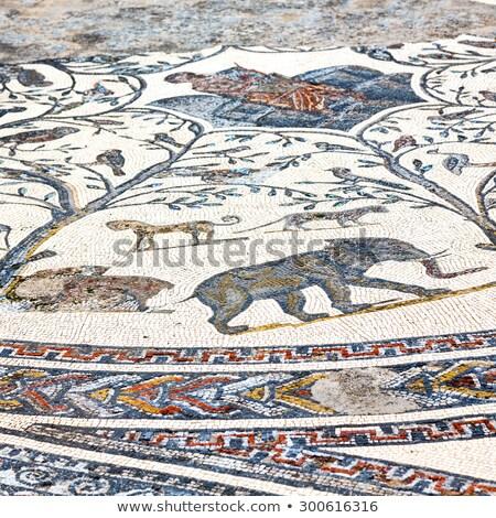 Pormenor antigo romano mosaico Marrocos arqueológico Foto stock © Hofmeester