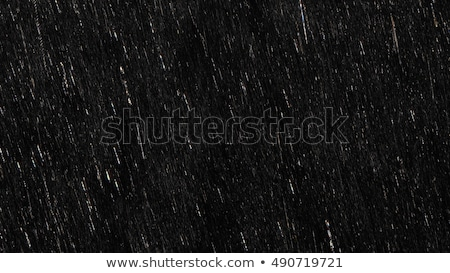 black rain stock photo © novic