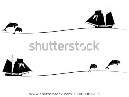дельфины высокий судно путешествия черно белые цветами Сток-фото © tanais