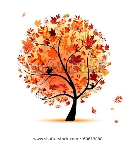 beautiful autumn tree for your design stock photo © beholdereye
