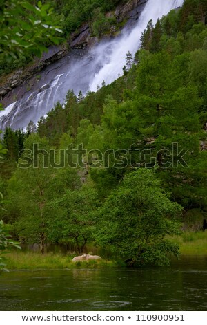 çağlayan · ada · doğa · manzara · yeşil - stok fotoğraf © nejron