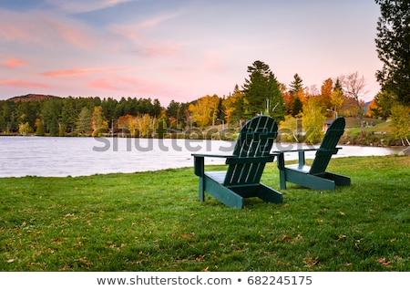 зеленый стульев два зеленая трава древесины домой Сток-фото © kimmit
