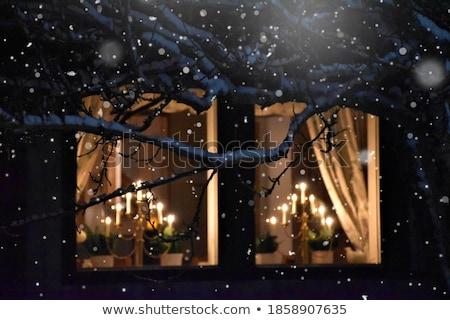 Christmas diner fine dining restaurant romantische kaas Stockfoto © Anna_Om