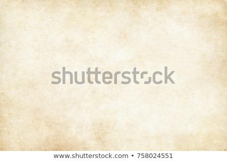 Vecchia carta foglio isolato bianco carta texture Foto d'archivio © kash76