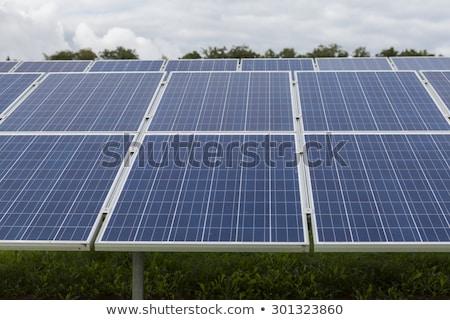 Campo blu solare alternativa energia sole Foto d'archivio © juniart