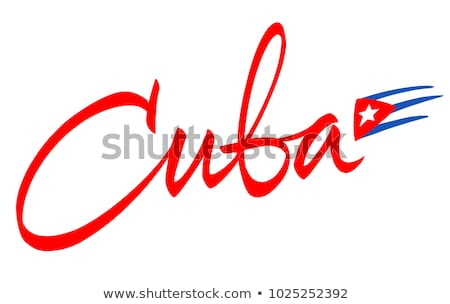 Küba bayrak gömlek iş adamı iş Stok fotoğraf © fuzzbones0