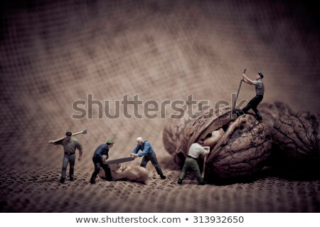 miniature with workers and walnut color tone tuned macro photo stock photo © kirill_m