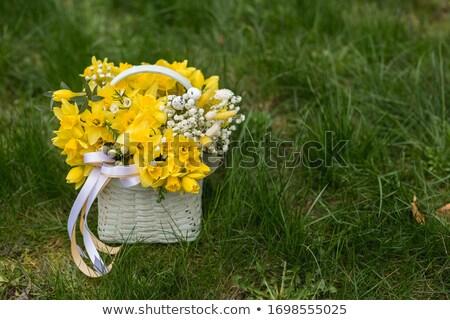 Yellow flower bloom in the basket Stock photo © nalinratphi